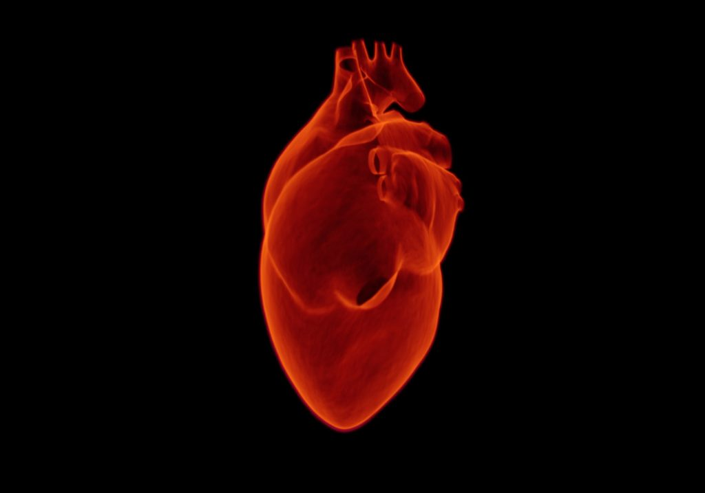 The Potential of Bioabsorbable Vascular Stents